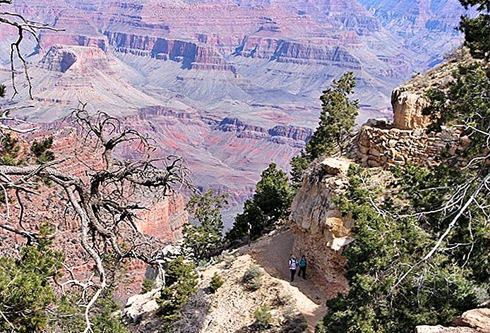 Tur Alam dan Margasatwa Taman Nasional Grand Canyon